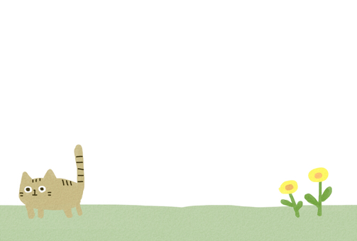 Cat (no clouds)