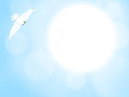 Dove and dazzling sun
