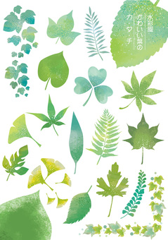 Watercolor style leaf set