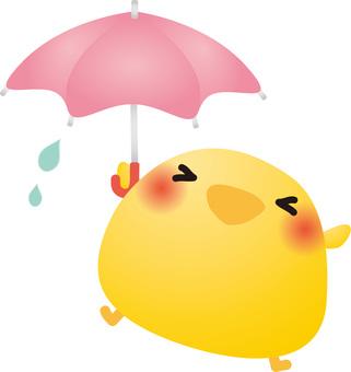 Chick and umbrella
