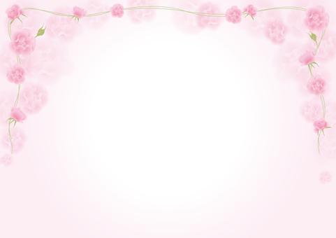 Rose _ Pink