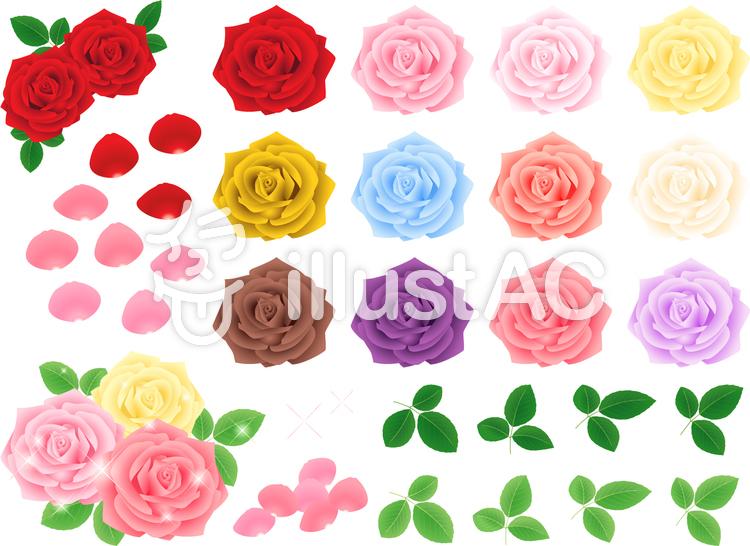 リアルな薔薇の素材セットイラスト No 1023018無料イラストなら