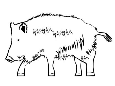 Japanese style wild boar