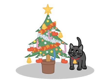 크리스마스 트리와 검은 고양이