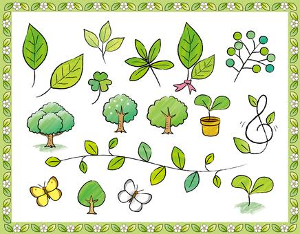Handwritten watercolor style leaf set