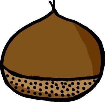 Chestnut brown brown chestnut