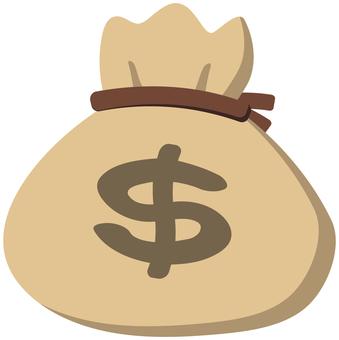 Dollar drawstring bag