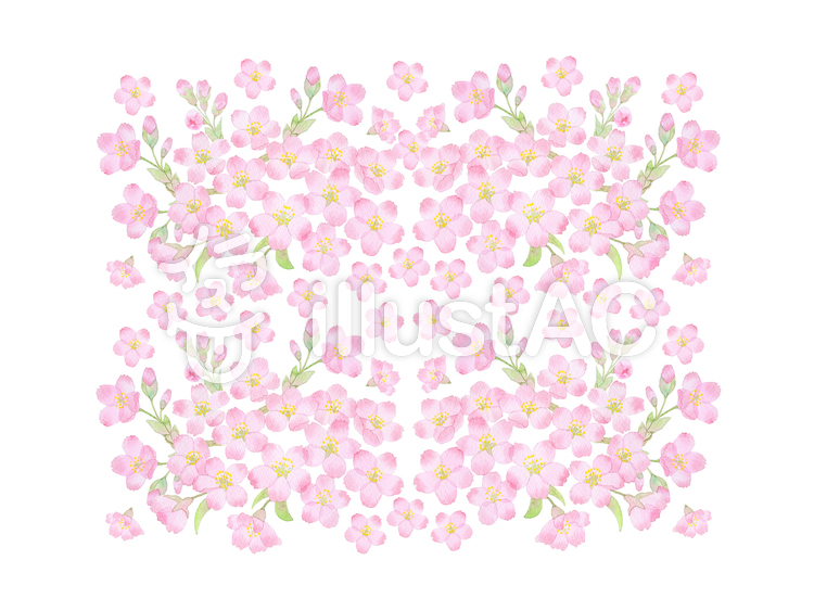 桜2016vr背景 ★0375-Fのイラスト