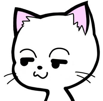 Cat face smart face