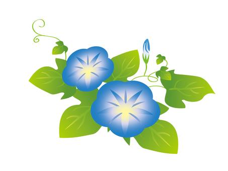 Asagao blue