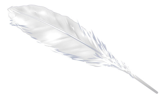 Feather ②