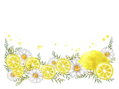 Lemon and Daisy 01