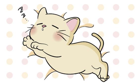 A nap of a kitten