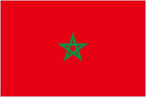 摩洛哥的旗幟