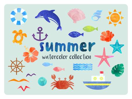 夏天和海水彩插图