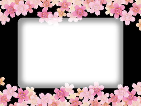 Background - Cherry Blossoms 70