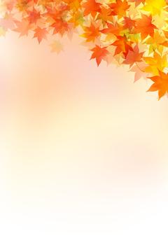 Fall image material 6