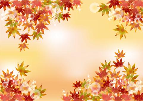 Autumn leaves 112