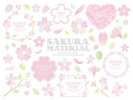 Various cherry blossoms SET