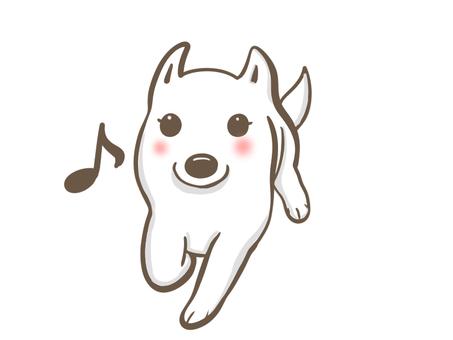 달리는 흰 개