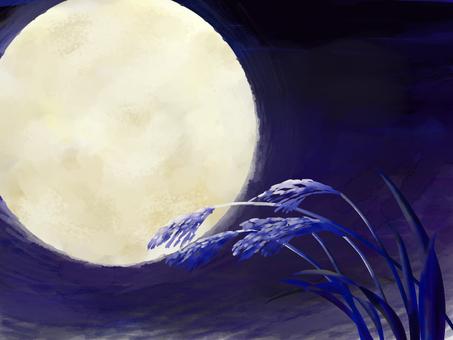 著名的月亮