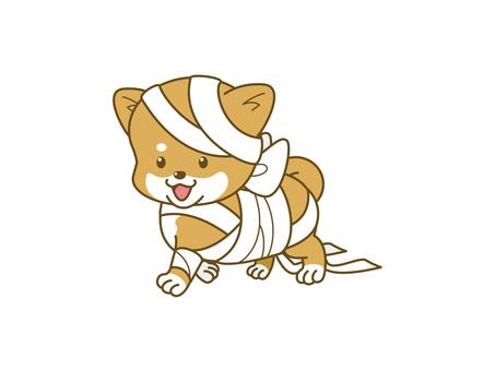 Poach Shiba _ Halloween _ 02