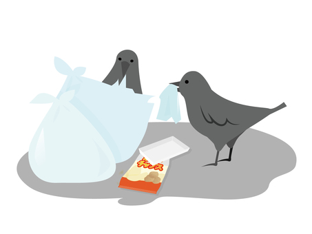 A crow roughening the garbage