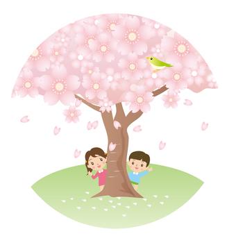 Cherry tree and children