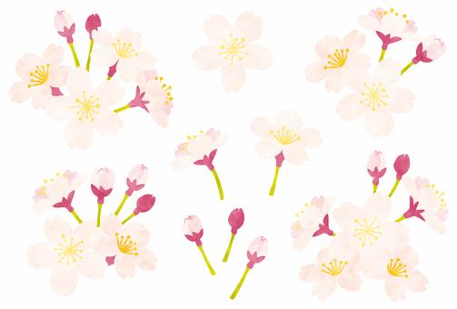 봄 / 벚꽃 · 부품 세트