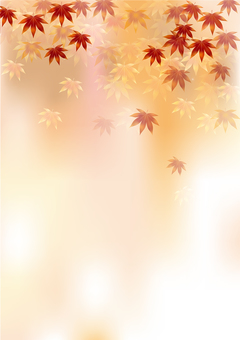 Autumn leaves 333