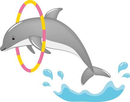 Dolphin round collar gray