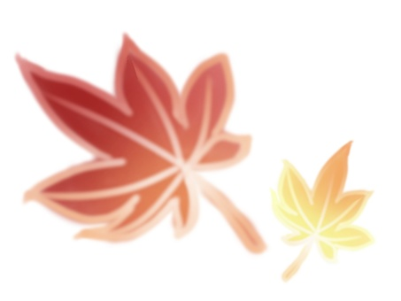 Maple red yellow