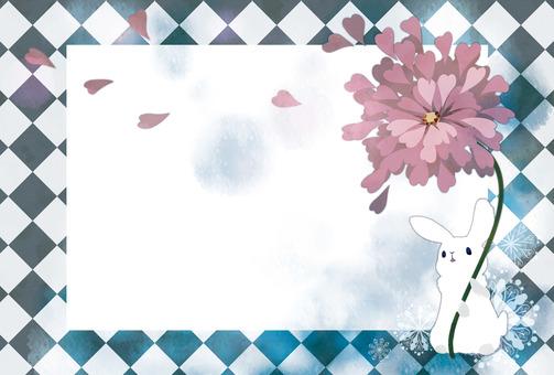 Petals and rabbits