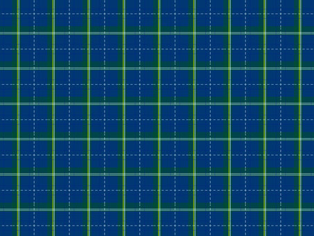 Check pattern 31