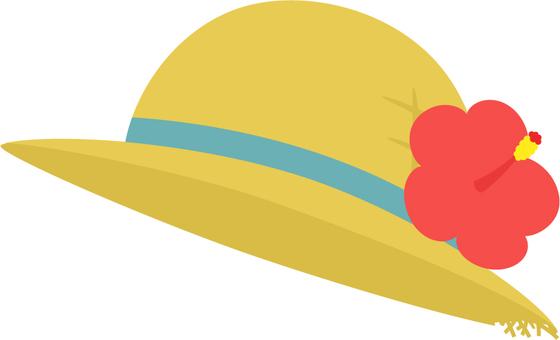 Turtle _ hat