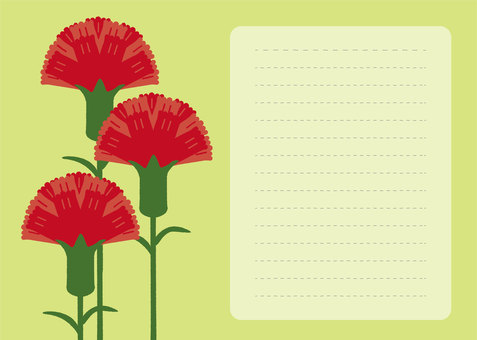 꽃 05_10 (카네이션 레터)