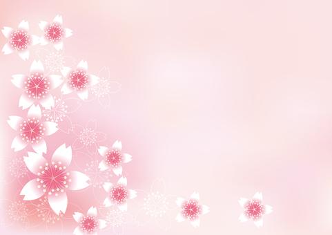 벚꽃의 꽃 28