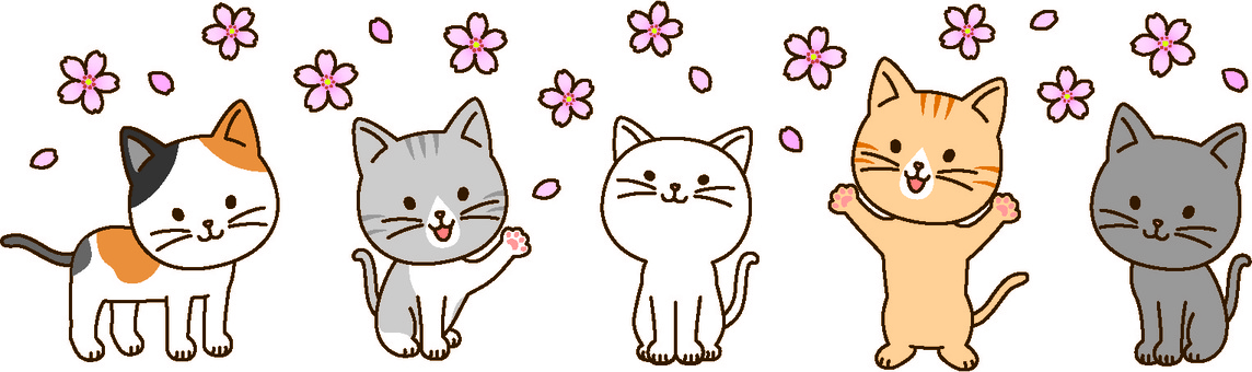 Spring cats