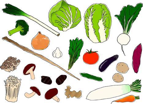 20 kinds of vegetables