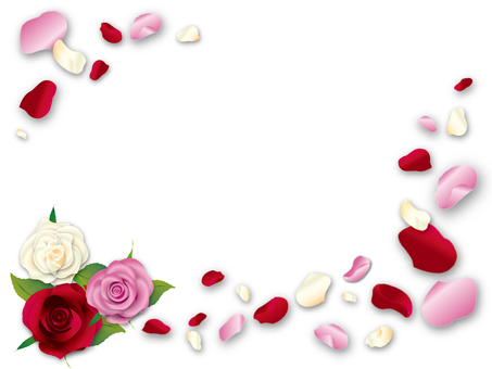 Roses and flower petals