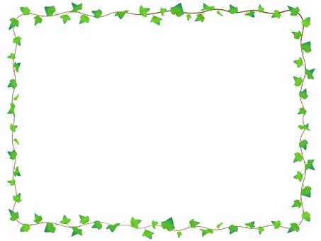 Ivy's frame 2