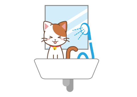 Cat_shower
