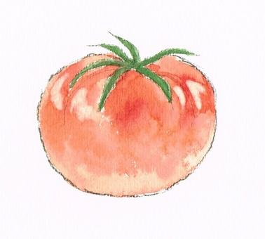 Tomato watercolor