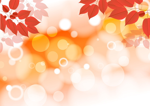 Texture background of autumn leaves color image
