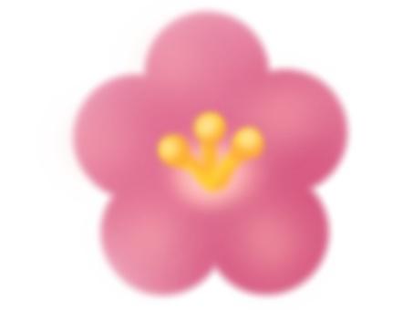 梅花(粉紅色)