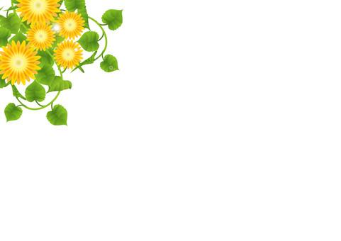 노란 꽃 휙 6