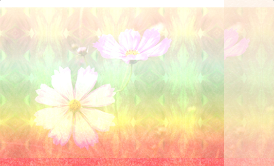 Card (business card) size _ rainbow colored cosmos