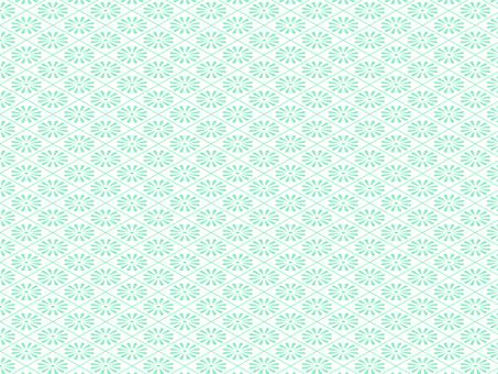 Ju lattice