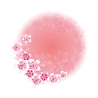 복숭아 꽃 71