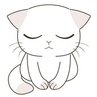 A cat that bows